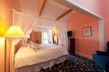 pink room and a canopy bed